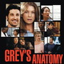 Grey's Anatomy – Grey's Anatomy