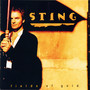 Sting &ndash; Fields Of Gold