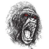 Monkey Dub Recordings
