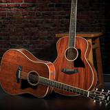 Nicholas Scofield Guitar